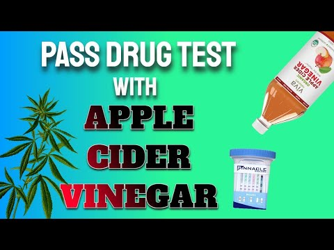 How To Use Apple Cider Vinegar To Pass A Drug Test Does It