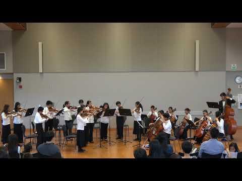 8 1 Franz Josef Haydn   String Quartet Op  33 No  3 The Bird   Finale Presto