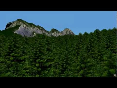 3D model of a real forest from airborne LiDAR