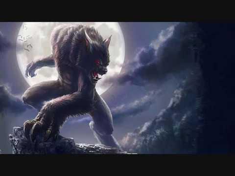 Одинокий Волк ~ Tenha Canavar ~