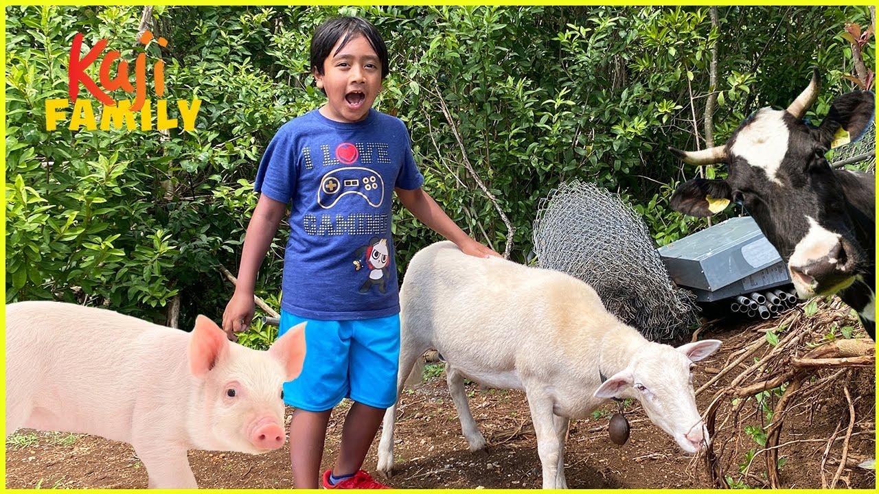 We play at the sheep farm and pet animals!