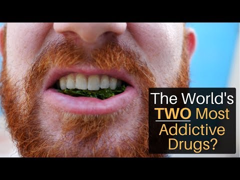 The World's 2 Most Addictive Drugs?