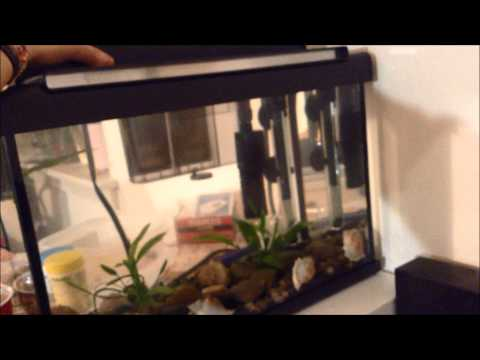 MARINA Style 5 Aquarium Kit - Betta Fish