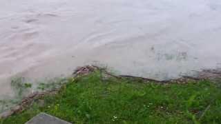 Tulln Hochwasser 4.6.2013