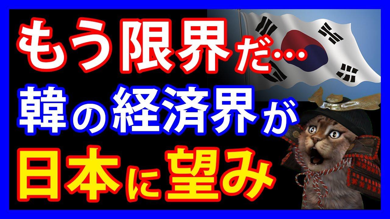 日本企業を参考!?隣国の経済界が隣国全土に促した日本の取り組みとは。一方、次期大統領候補者がTikTokのパクり騒動で撃沈・・・