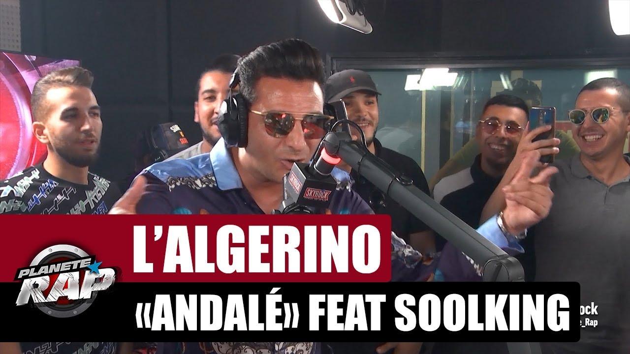 algerino andalé