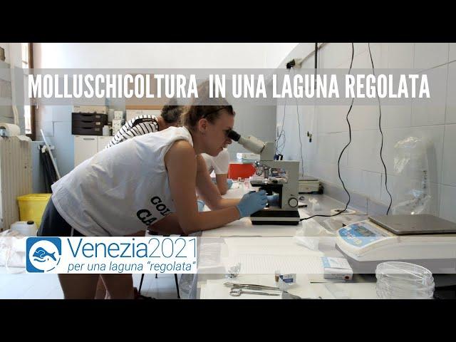 Venezia2021 - Qualità del sedimento lagunare a supporto della sua gestione sostenibile