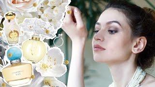 Как выбрать свадебный аромат? Духи для невесты 💍 Anisia Beauty
