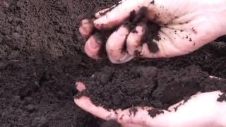 видео продажа плодородного грунта