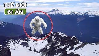 Top 5 người tuyết Yeti được quay lại ngoài đời thật