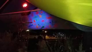 STEPHANOVICI - Marea cu Sarea 2016
