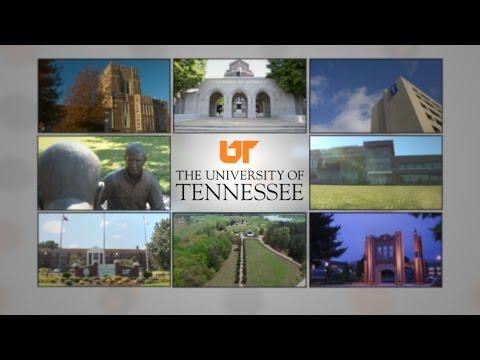 2016 - University of Tennessee Strategic Plan