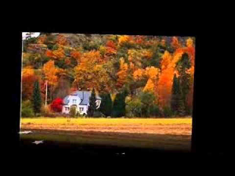 O Sanam O Sanam (Film : Jurm).flv