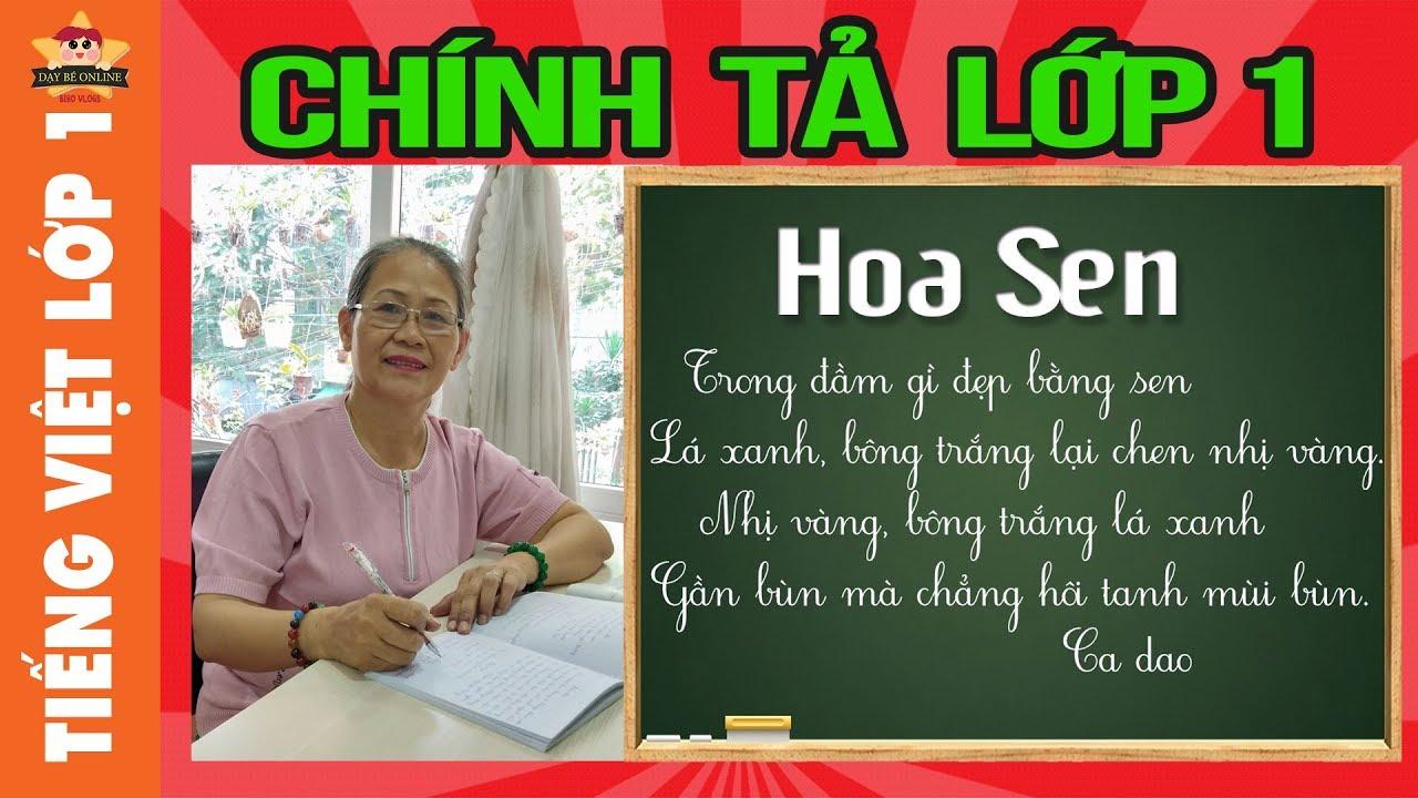 Tiếng việt lớp 1 - Chính tả lớp 1 - Cô đọc bé viết chính tả bài Hoa Sen, tuần 29