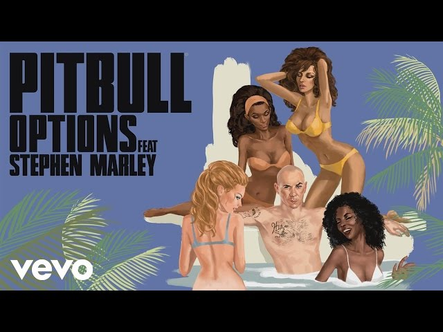 Pitbull - Options (Damaged Goods Remix) [Audio] ft. Stephen Marley