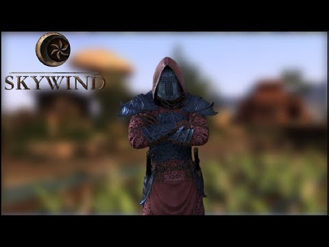 Skywind - The Brilliant Looking Morrowind Remaster, Built from Skyrim