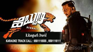 Download Hindi Video Songs - HEBBULI DEVARE NEENU IRO KARAOKE  RANGNATN DRAVID 9591116111