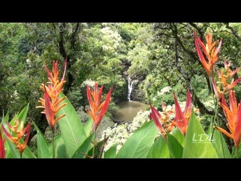 Puohokamoa Falls & The Garden of Eden. Maui, Hawaii.