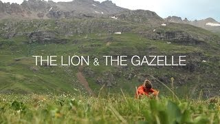 The Lion & The Gazelle