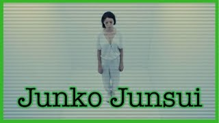 The Internet's Most Controversial ARG | Junko Junsui