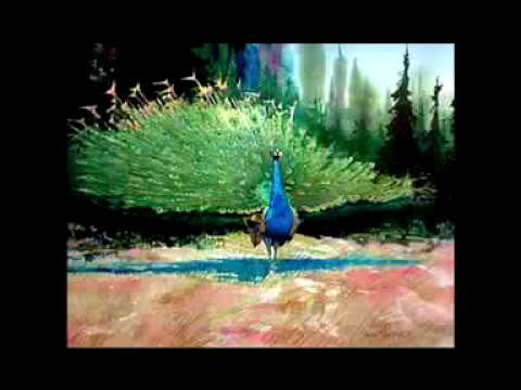 David Rankin's Wildlife Watercolors Exhibition at Kokoon Arts Gallery Cleveland Ohio