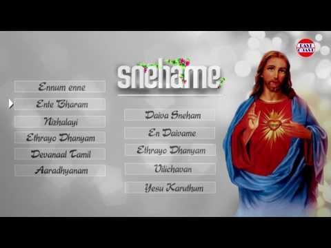 Snehame | Christian Devotional Songs  Malayalam | Latest Christian Songs