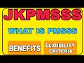 Gambar cover PMSSS- What is PMSSS  Benefits of PMSSS  Eligibility criteria  Whole Process.