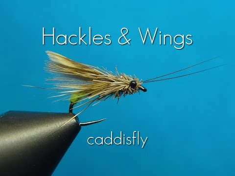 Fly Tying Caddisfly | Hackles & Wings