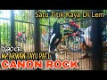 Kacer Gacor Full Isian Buka Ekor Full Ngobra Tancap Satu Titik Canon Rock Mr Arwan Tayu Pati  Mp3 - Mp4 Download