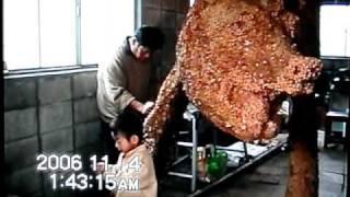 世界初 ドッグフード狼像2006 HIROKI OHASHI TO DOGS WOLF DOGFOOD ...