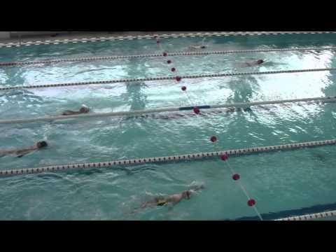 Соревнование по плаванию. 50 метров