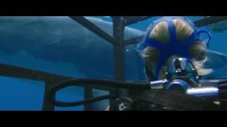 Трейлер фильма: Синяя бездна
