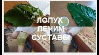 ЛОПУХ.Как лечить суставы ЛОПУХОМ//Рецепт компресса от ПОДПИСЧИКОВ 100% РЕЗУЛЬТАТ!!!helen marynina