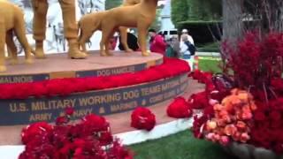 Natural Balance Rose Parade Float 2013 - Presented by Petco