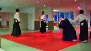 Aikido ikkyo breaking the balance