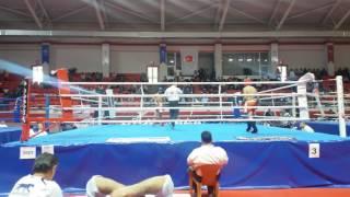 Türkiye kickboks şampiyonası 2016