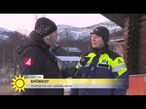 """Snöbrist i svenska fjällen: """"Har aldrig varit med om att det varit så bart så … - Nyhetsmorgon (TV4)"""