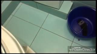 видео класс энергопотребления а стиральных машин