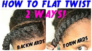 FLAT TWIST TUTORIAL on NATURAL HAIR | TWO WAYS!!! | BEGINNER FRIENDLY ! | THE CURLY CLOSET