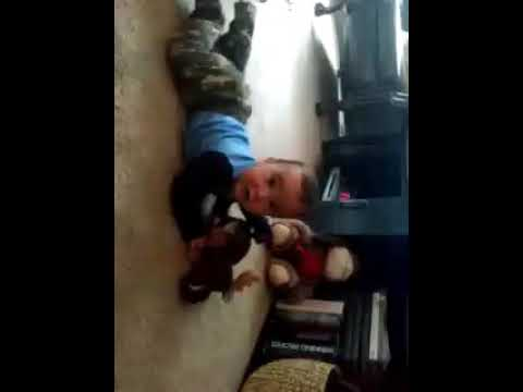 Baby attacks laughing moose