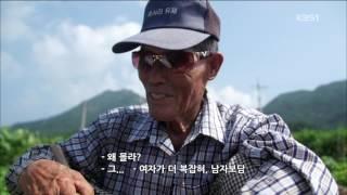 20160808 남도지오그래피