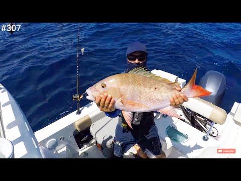 I Self Quarantine To Bahamas In My Crooked PilotHouse Boat Miami To Bimini Deep Drop Fishing