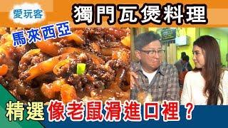 【馬來西亞】獨門瓦煲老鼠粉 口感竟然像老鼠滑進口裡? 愛玩客 精華