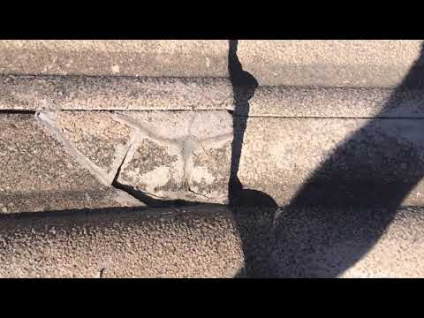 doggy-trades-man-break-your-tiles-and-how-they-hide-broken-tiles-on-your-roof-part-two
