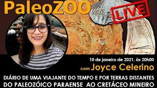 PALEOZOOBR LIVE: DIÁRIO DE UMA VIAJANTE DO TEMPO E POR TERRAS DISTANTES