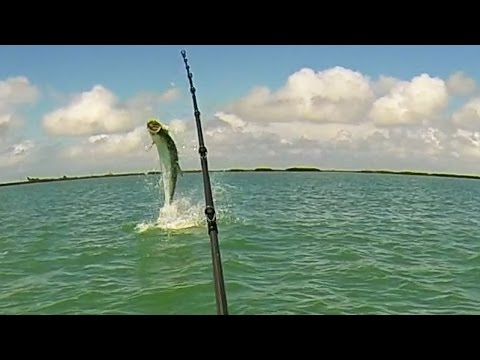 Back To Fishing - Florida Keys Tarpon Fishing