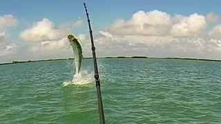 Back To Fishing - Florida Keys Tarpon Fishing