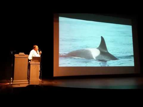 Superpod 5 - CWR: 40 years and Counting Shifting Baselines in the Salish Sea