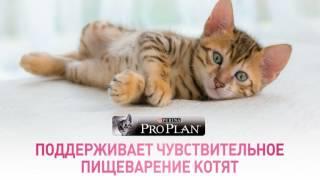 PURINA® PRO PLAN® Junior Delicate с комплексом OPTIDIGEST®