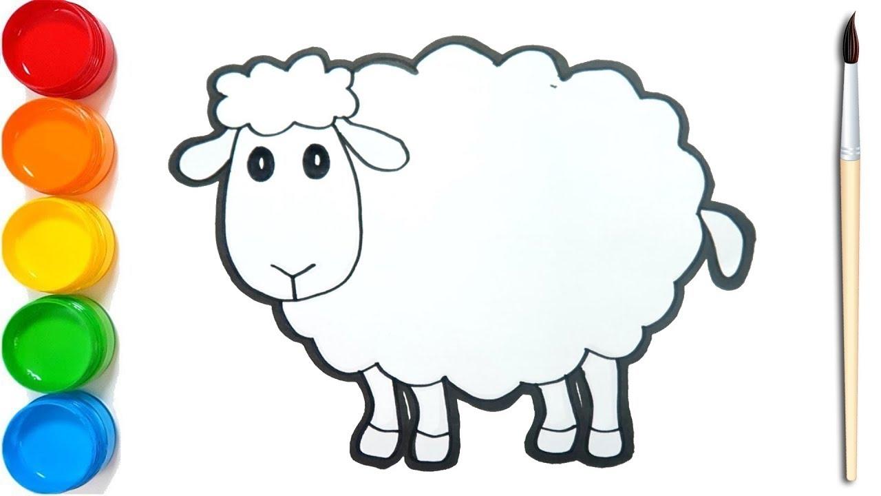 62 gambar hewan kambing hitam putih hd terbaik gambar hewan. Cara Menggambar Dan Mewarnai Domba Dengan Mudah Coloring Pages Youtube